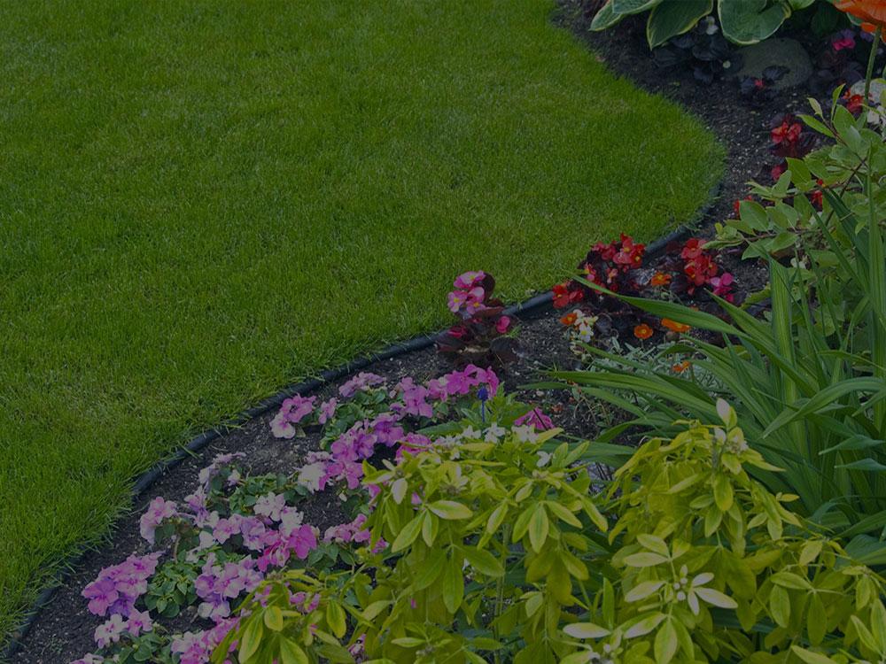 Rockville Garden Design