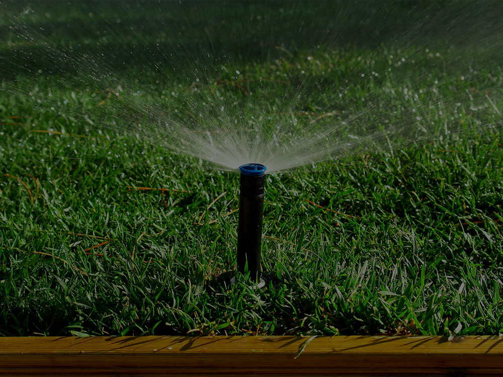 Rockville irrigation