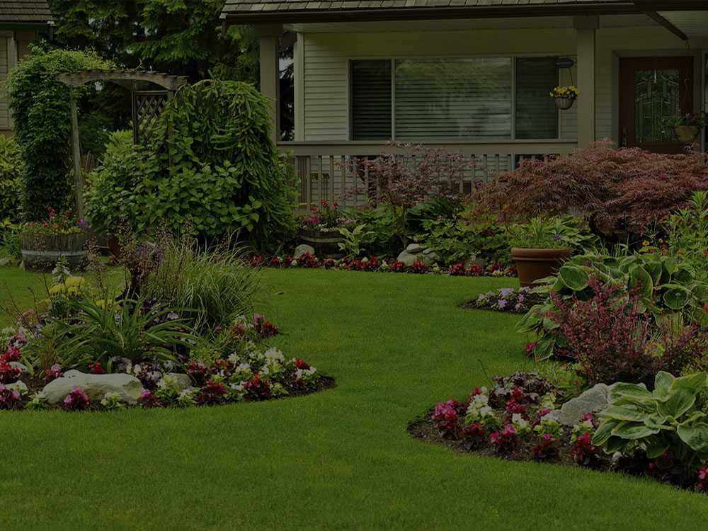 Rockville Landscape Design