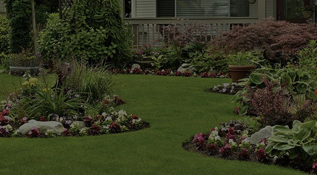Richmond Landscape Design
